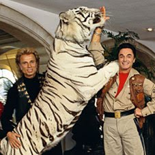 Siegfried and Roy Tiger