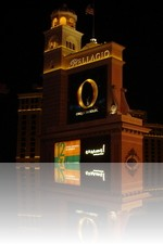 Bellagio Las Vegas Sign at night