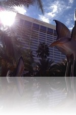 Flamingo Hotel from the Pool