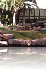Flamingo Wildlife Habitat Vegas